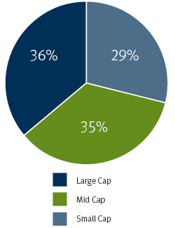 Pie chart showing Market Cap Distribution: Large Cap-36%, Mid Cap-35%,  Small Cap 29%